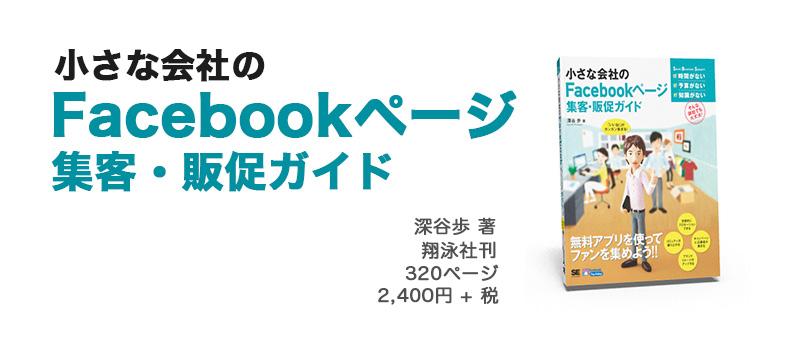 achievement_writing_smallfacebook2013